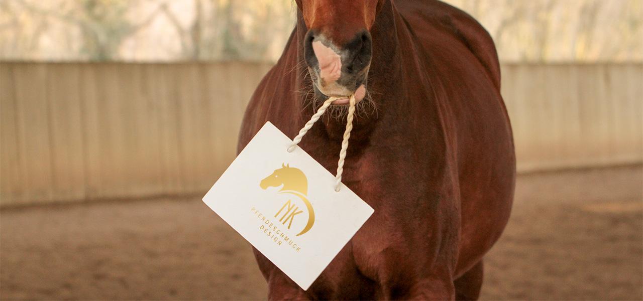 Gutschein für Pferdehaarschmuck