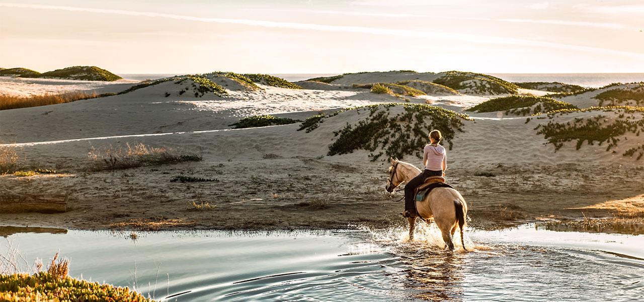 Pferdehaarschmuck Westernlinie